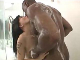 hottie momo black ebony white cream dark swallow