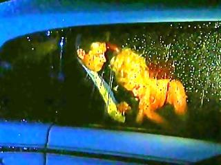 backseat cock sucking with british babe